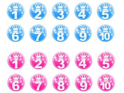 25年度発言率ランキング(江戸川区議会 委員会)